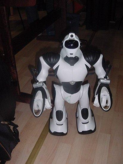 Robotti1.jpg