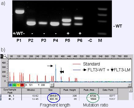 geneettinenkoodi2.jpg